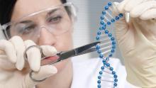 Ricercatrice manipola modello di DNA