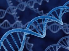 Immagine di filamenti di DNA